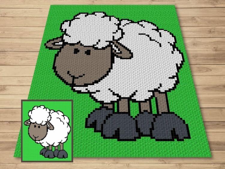SHOP PHOTO 1 - Cute Lamb