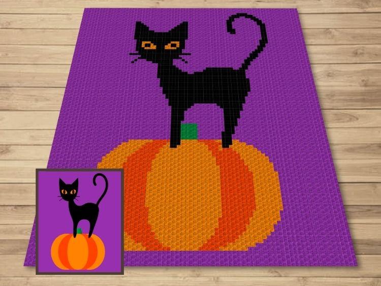 SHOP PHOTO 1 - Halloween Black Cat On Pumpkin